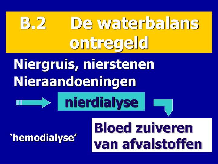 B.2     De waterbalans     ontregeld