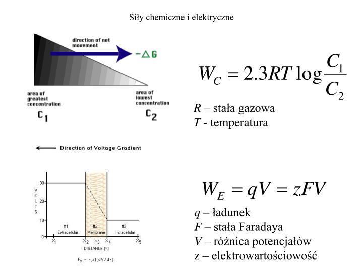 Siły chemiczne i elektryczne