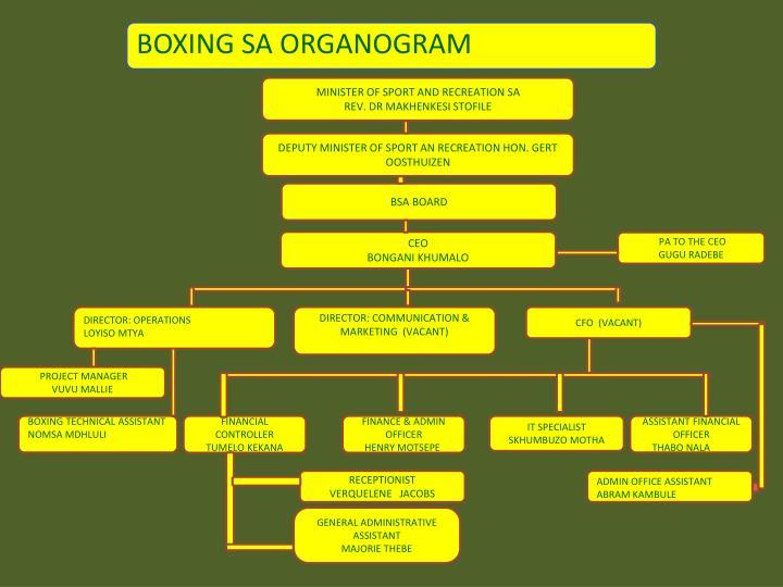 BOXING SA ORGANOGRAM