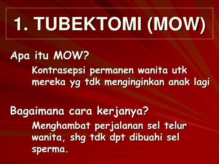 1. TUBEKTOMI (MOW)