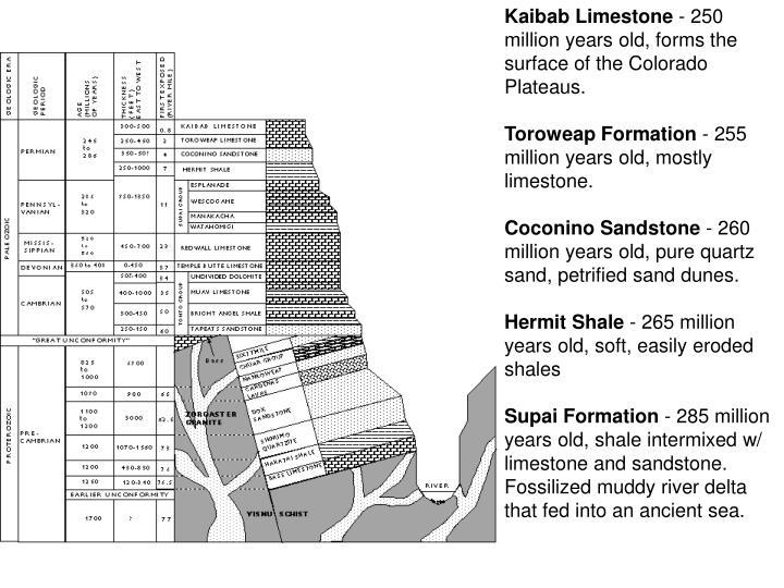Kaibab Limestone