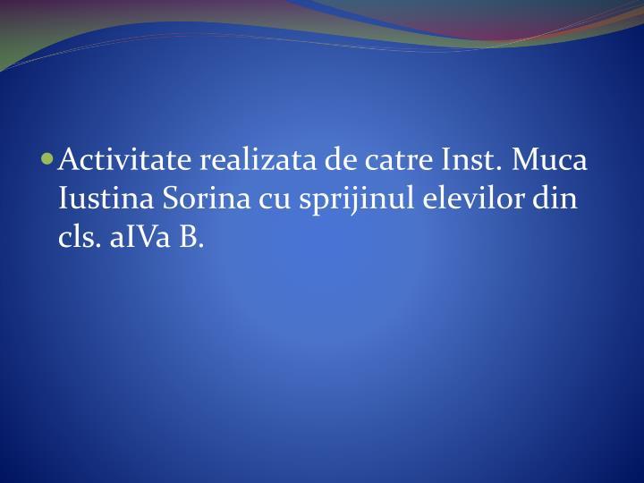 Activitate realizata de catre Inst. Muca Iustina Sorina cu sprijinul elevilor din cls. aIVa B.