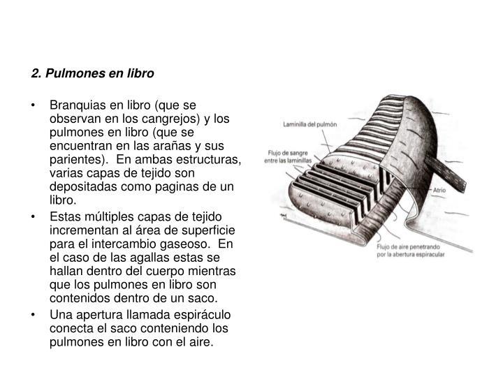 2. Pulmones en libro