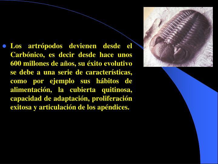 Los artrópodos devienen desde el Carbónico, es decir desde hace unos 600 millones de años, su éxito evolutivo se debe a una serie de características, como por ejemplo sus hábitos de alimentación, la cubierta quitinosa, capacidad de adaptación, proliferación exitosa y articulación de los apéndices.