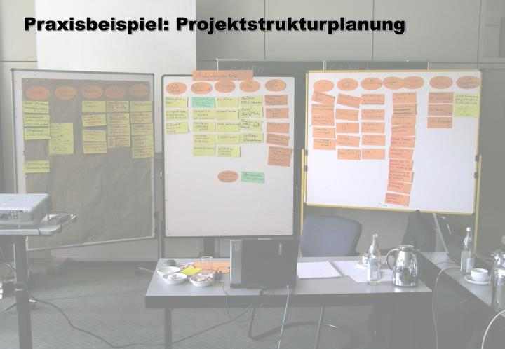 Praxisbeispiel: Projektstrukturplanung