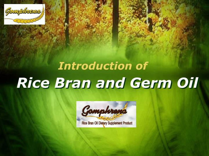 Rice bran and germ oil
