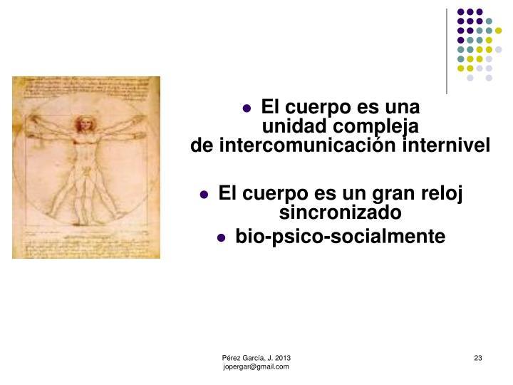 El cuerpo es una                        unidad compleja                              de intercomunicación internivel