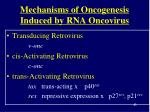 mechanisms of oncogenesis induced by rna oncovirus