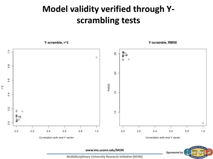 Model validity verified through Y-scrambling tests