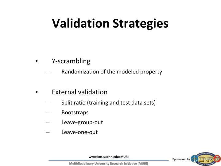 Validation Strategies