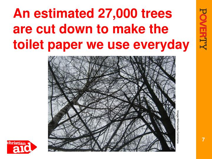An estimated 27,000 trees are cut down to make the toilet paper we use everyday