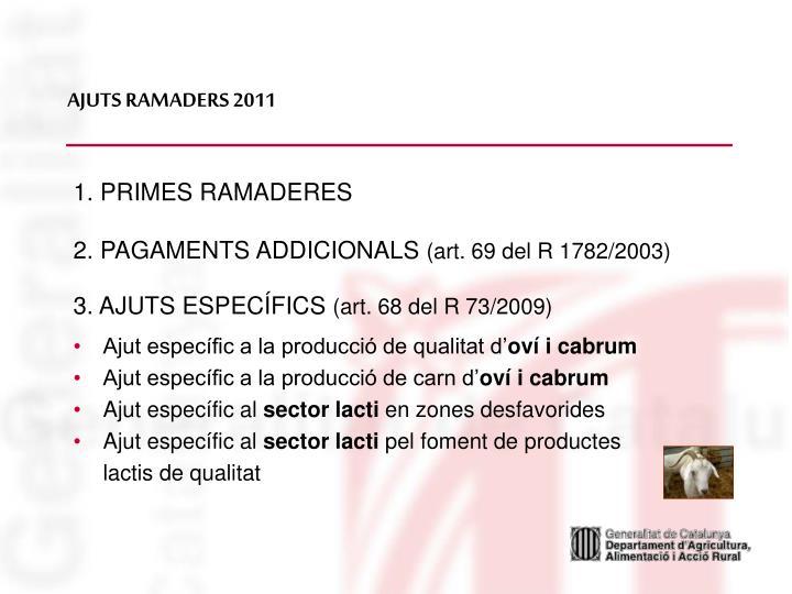 AJUTS RAMADERS 2011