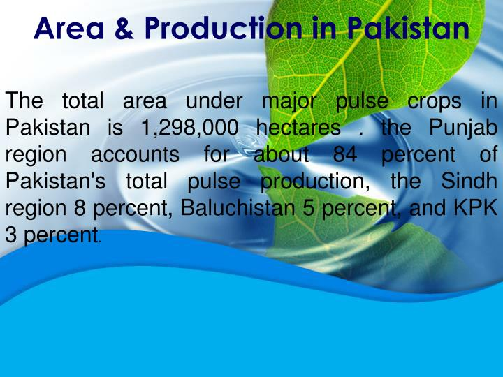 Area & Production in Pakistan