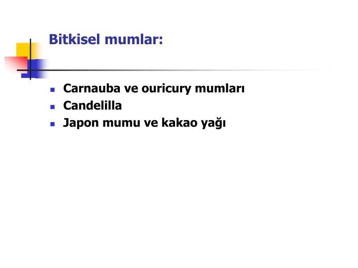 Bitkisel mumlar: