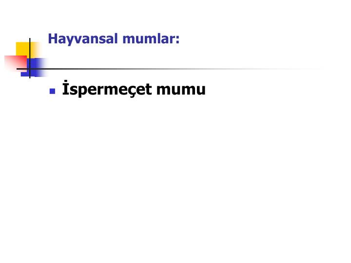 Hayvansal mumlar: