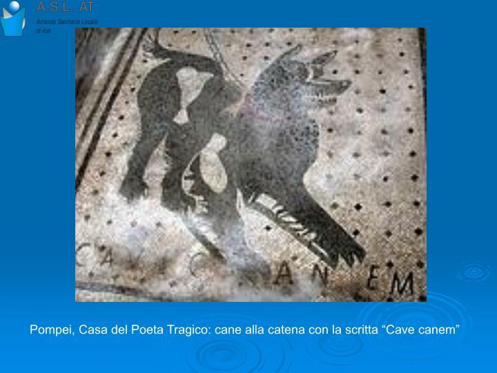 """Pompei, Casa del Poeta Tragico: cane alla catena con la scritta """"Cave canem"""""""