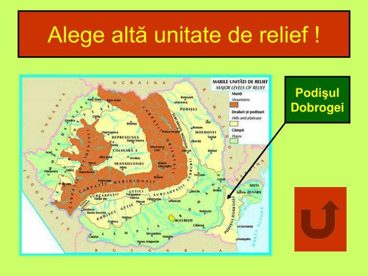 Alege altă unitate de relief !
