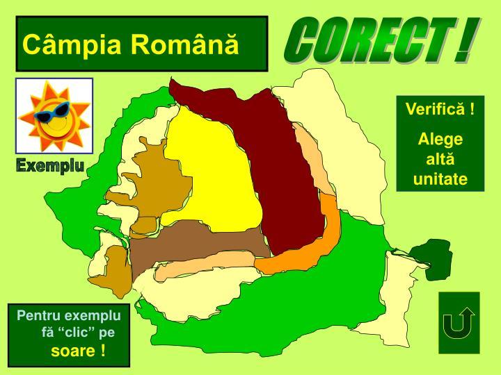 Câmpia Română