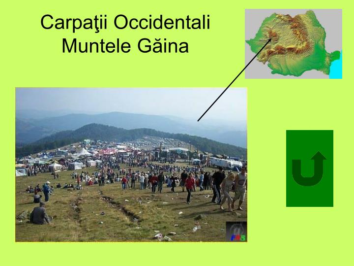 Carpaţii Occidentali