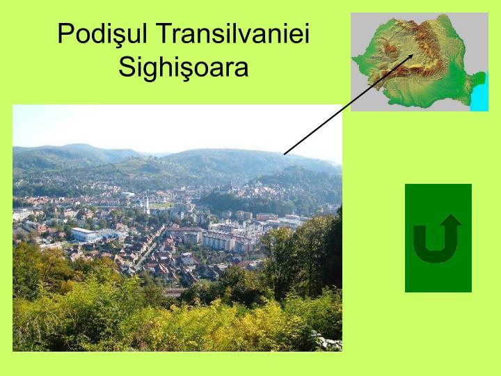 Podişul Transilvaniei