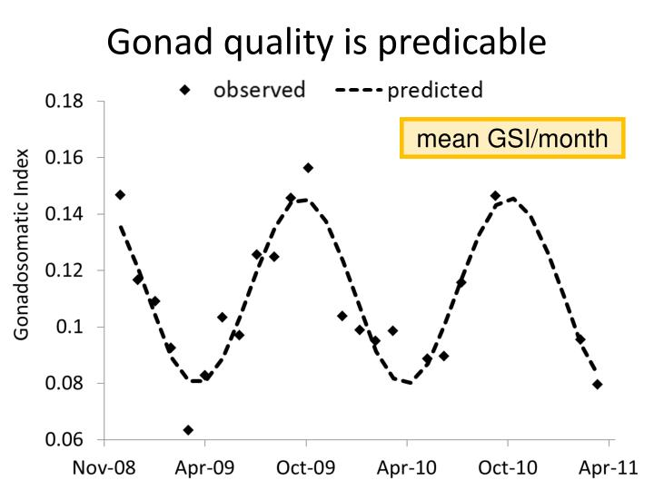 Gonad quality is predicable