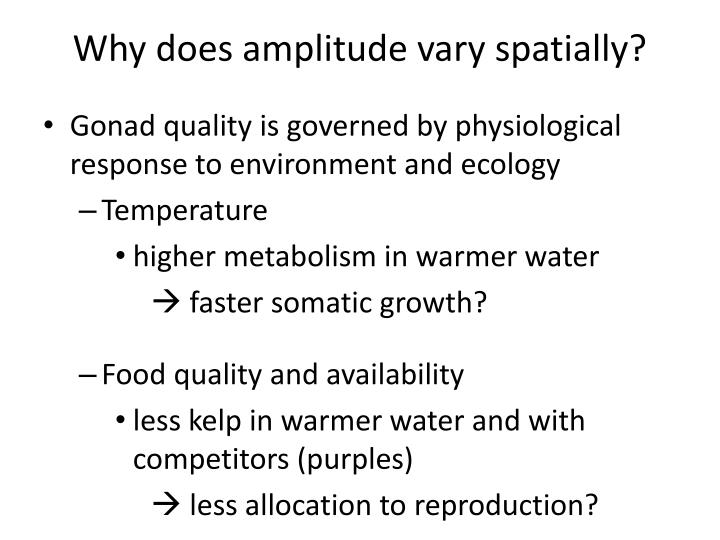 Why does amplitude vary spatially?