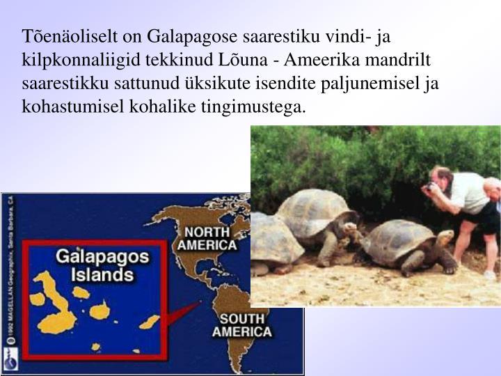 Tõenäoliselt on Galapagose saarestiku vindi- ja kilpkonnaliigid tekkinud Lõuna - Ameerika mandrilt saarestikku sattunud üksikute isendite paljunemisel ja kohastumisel kohalike tingimustega.