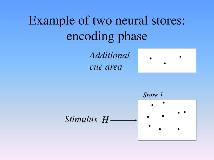 Example of two neural stores: encoding phase