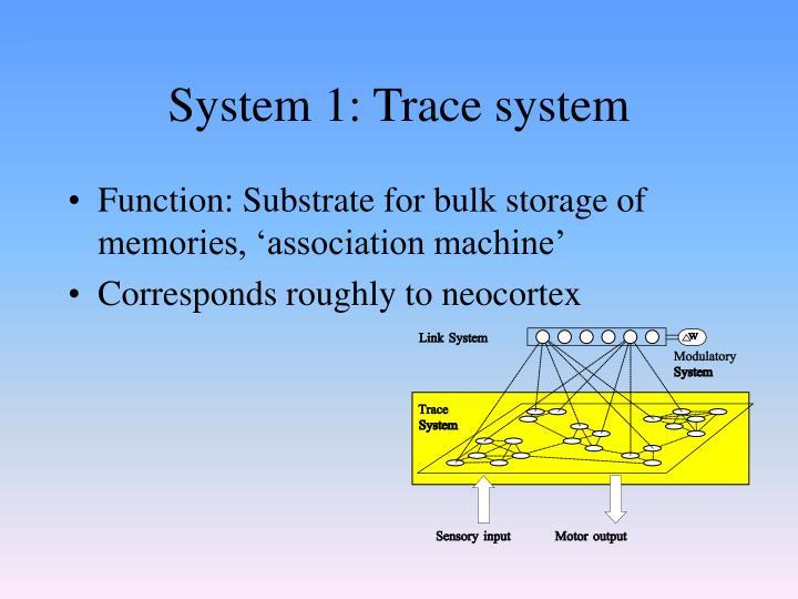 System 1: Trace system