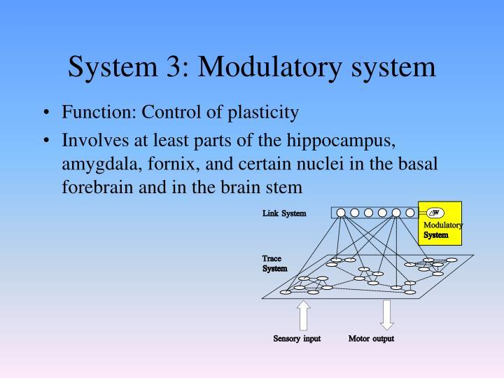 System 3: Modulatory system