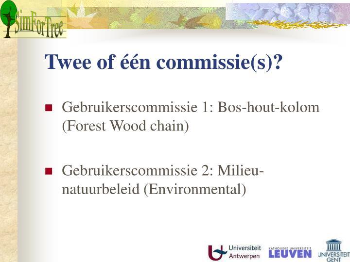 Twee of één commissie(s)?