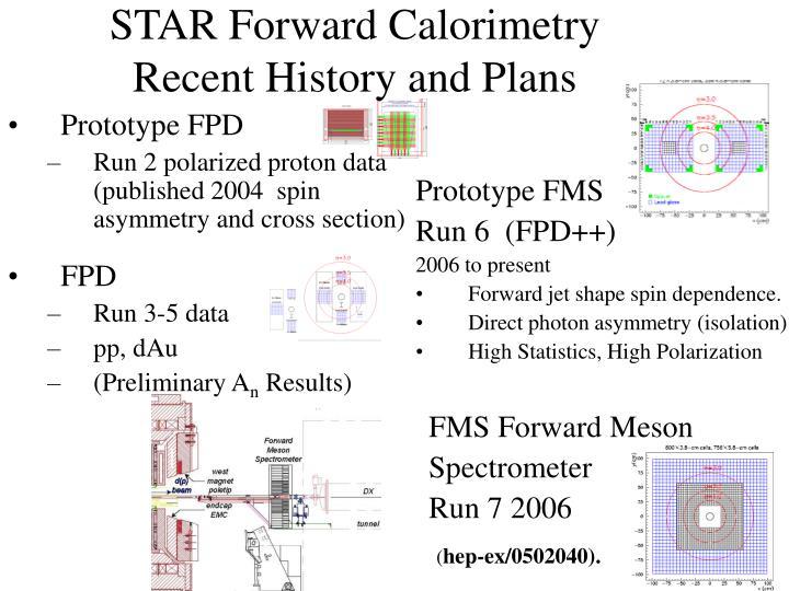 STAR Forward Calorimetry