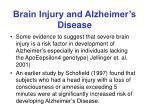 brain injury and alzheimer s disease
