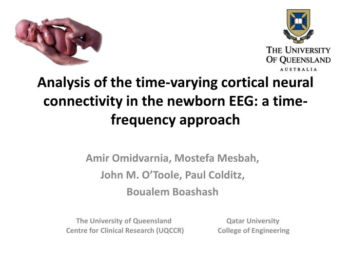 Analysis of the time-varying cortical neural connectivity in the newborn EEG: a time-frequency approach