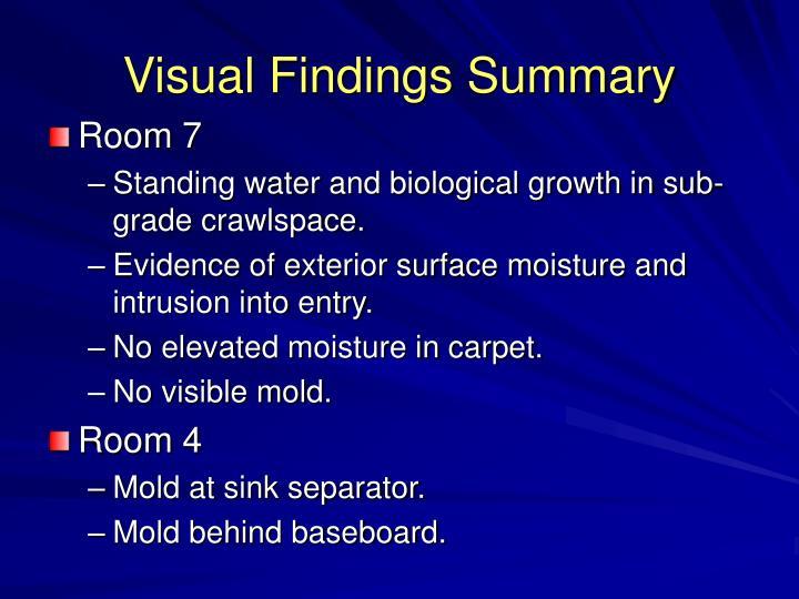 Visual Findings Summary