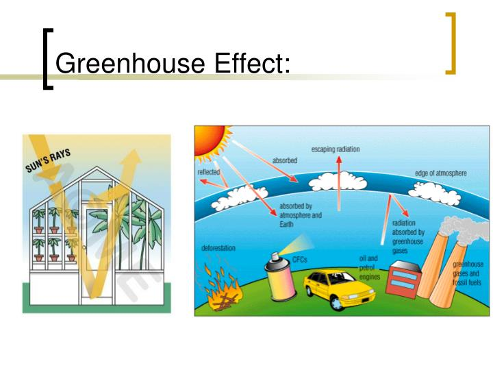 Greenhouse Effect: