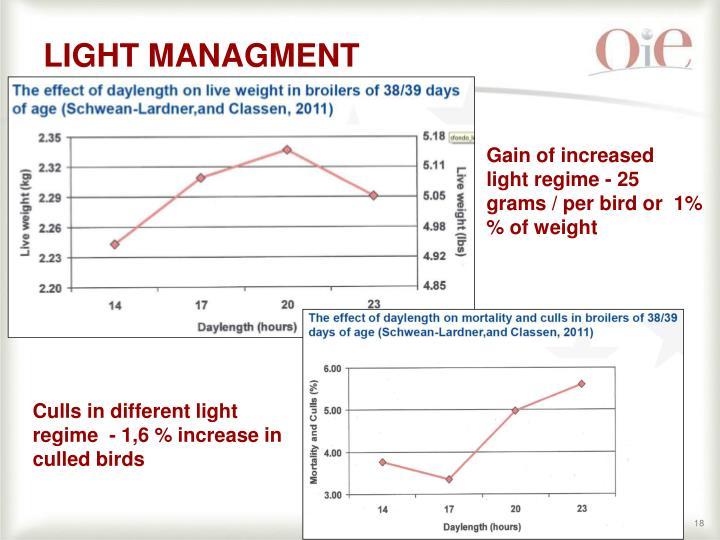 LIGHT MANAGMENT