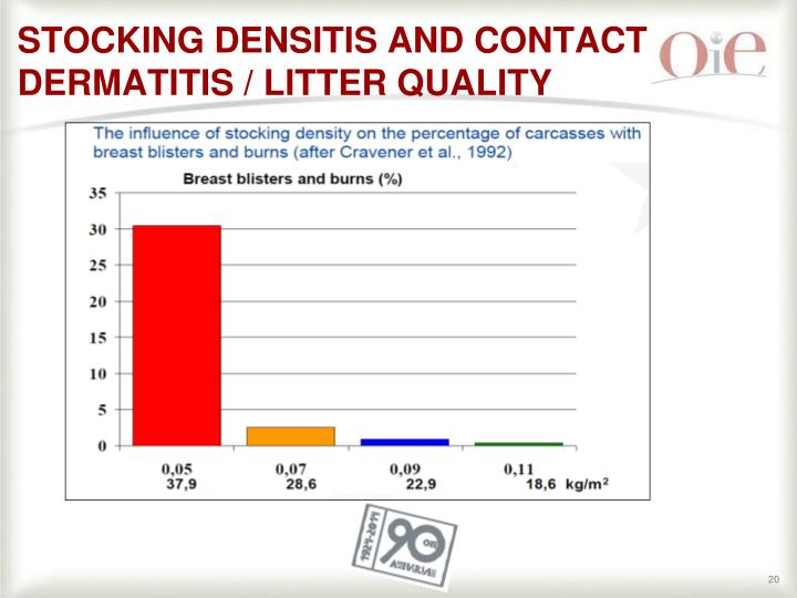 STOCKING DENSITIS AND CONTACT DERMATITIS / LITTER QUALITY