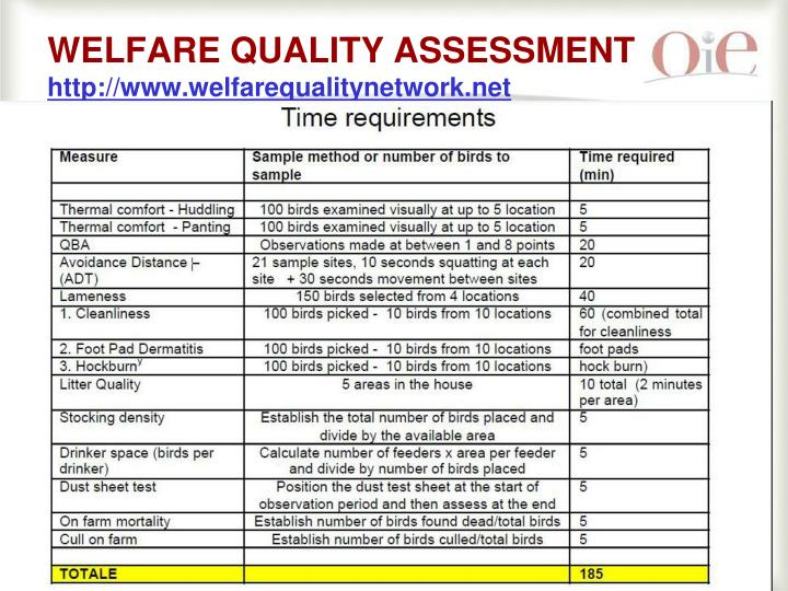 WELFARE QUALITY ASSESSMENT