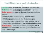 half reactions and electrodes