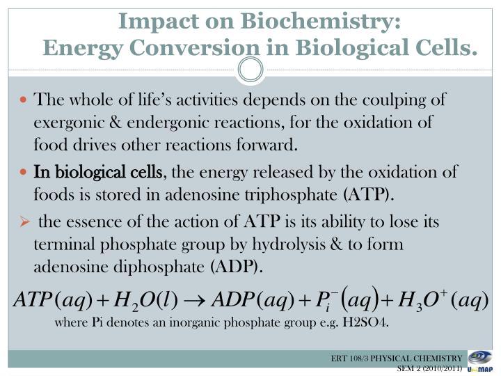 Impact on Biochemistry: