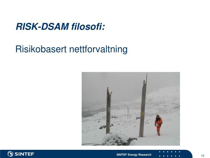 RISK-DSAM filosofi: