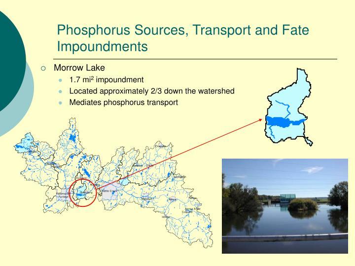 Phosphorus Sources, Transport and Fate