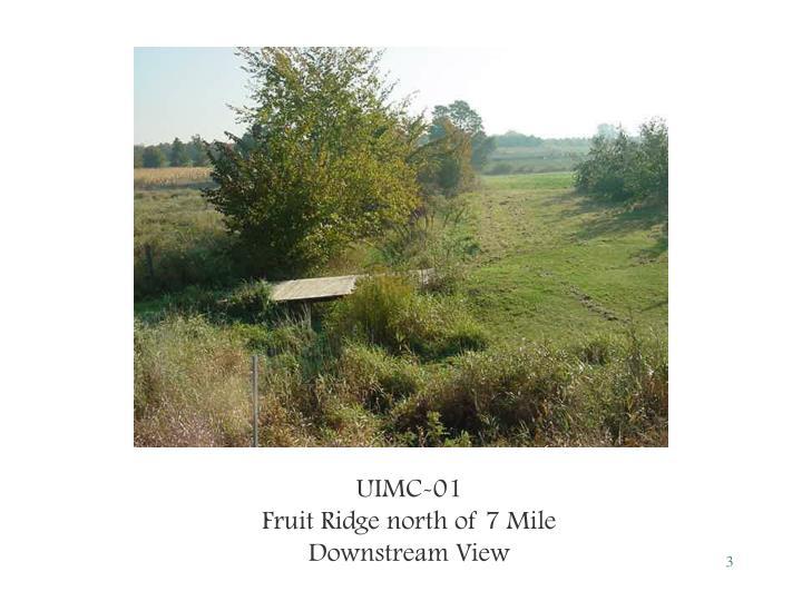 UIMC-01