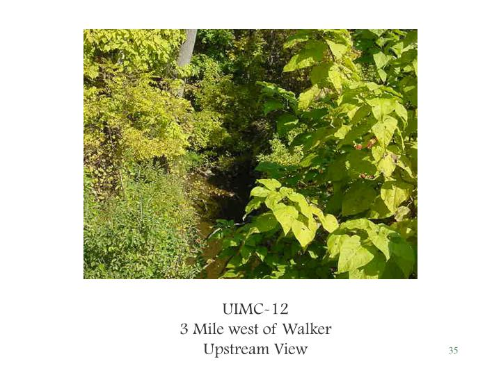 UIMC-12