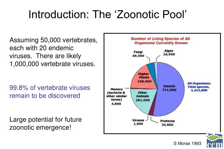 Introduction: The 'Zoonotic Pool'