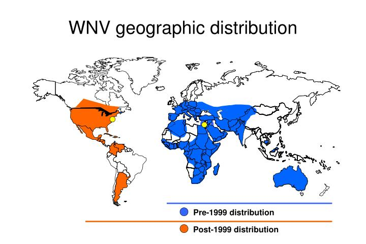 WNV geographic distribution