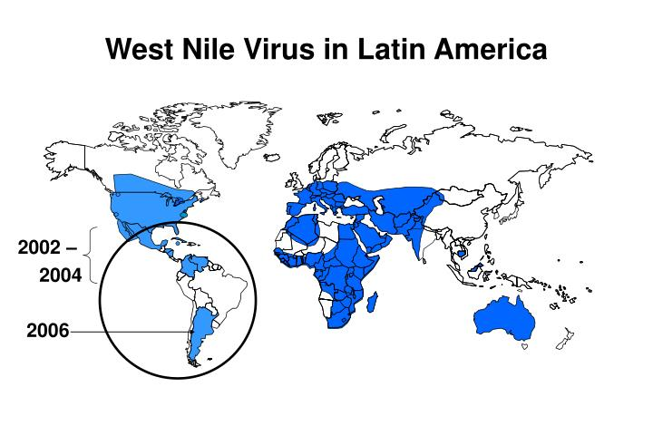 West Nile Virus in Latin America