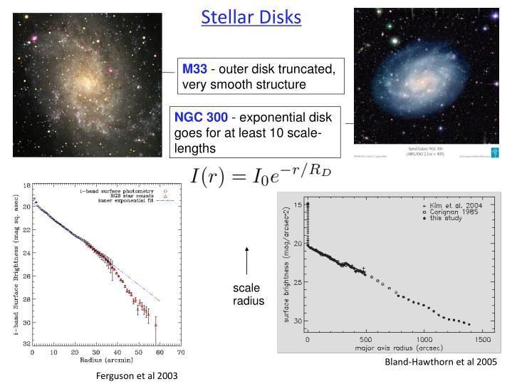 Stellar Disks