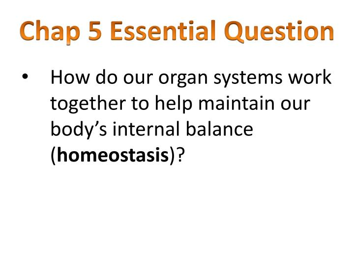 Chap 5 Essential Question